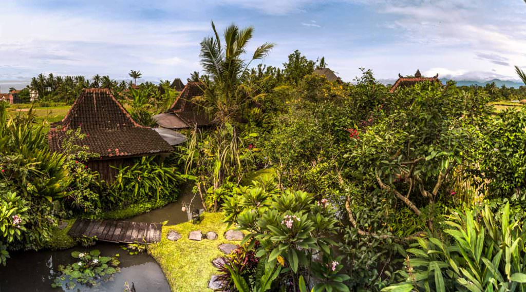 Dragonfly Village - UBUD, Indonesia
