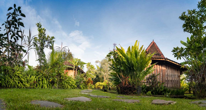 Dragonfly Village - UBUD, Indonesia